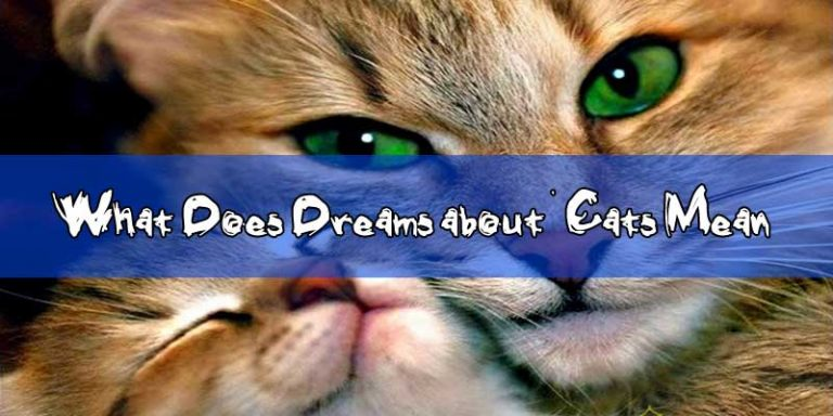 What Does Dreams about Cats Mean