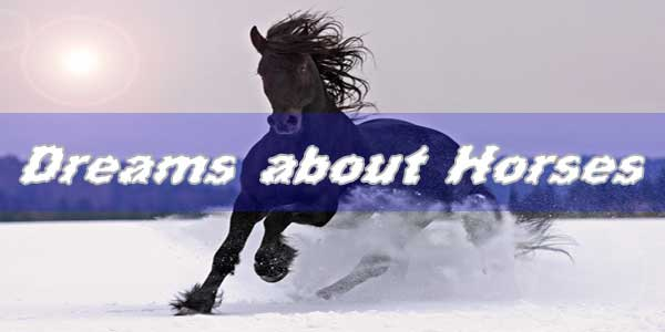 8 Dreams about Horses: What does a horse mean in dreams?
