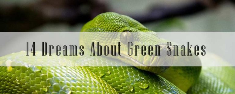 14 Dreams About Green Snakes: Meaning & Interpretation