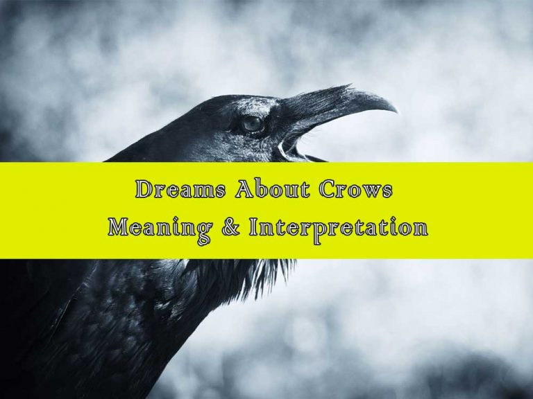 14 Dreams About Crows: Meaning & Interpretation