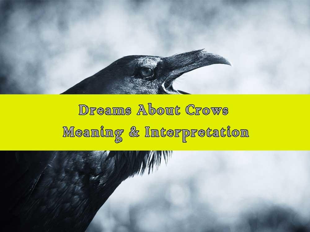 14 Dreams About Crows: Meaning & Interpretation - Crow Dreams