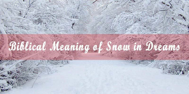 24 Biblical Meaning of Snow in Dreams & Interpretation