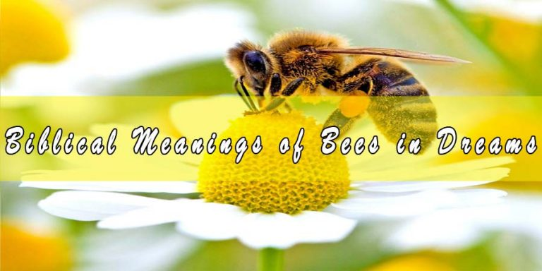 Biblical Meanings of Bees in Dreams & Interpretation