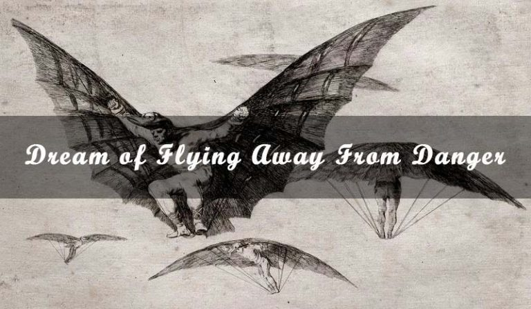 Dream of Flying Away From Danger