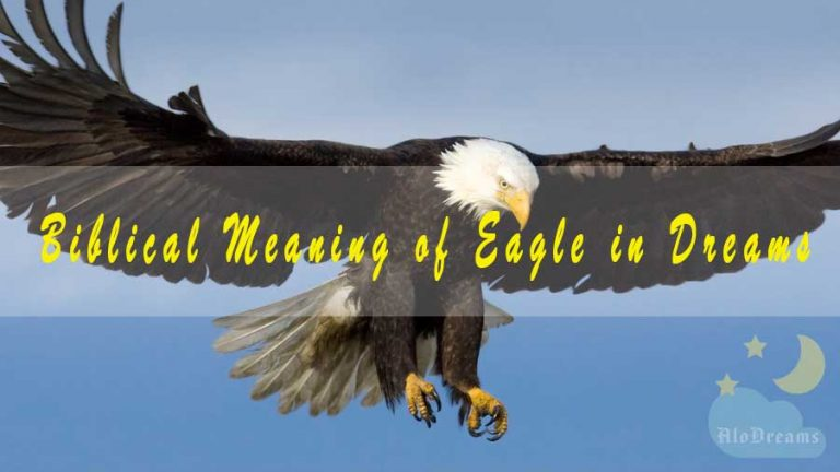 Biblical Meaning of Eagle in Dreams & Interpretation