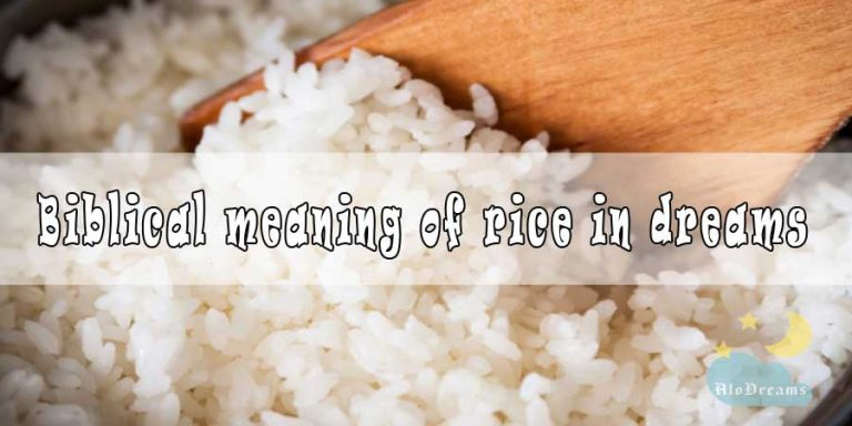 #15 Biblical Meaning of Rice in Dreams