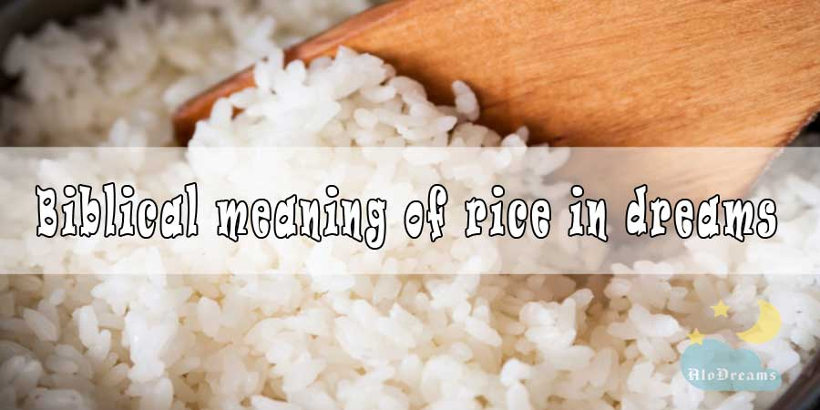 15 Biblical Meaning of Rice in Dreams & Interpretation
