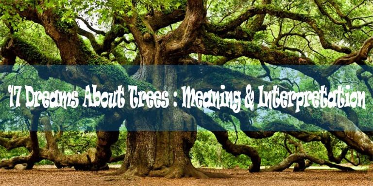 17 Dreams About Trees : Meaning & Interpretation