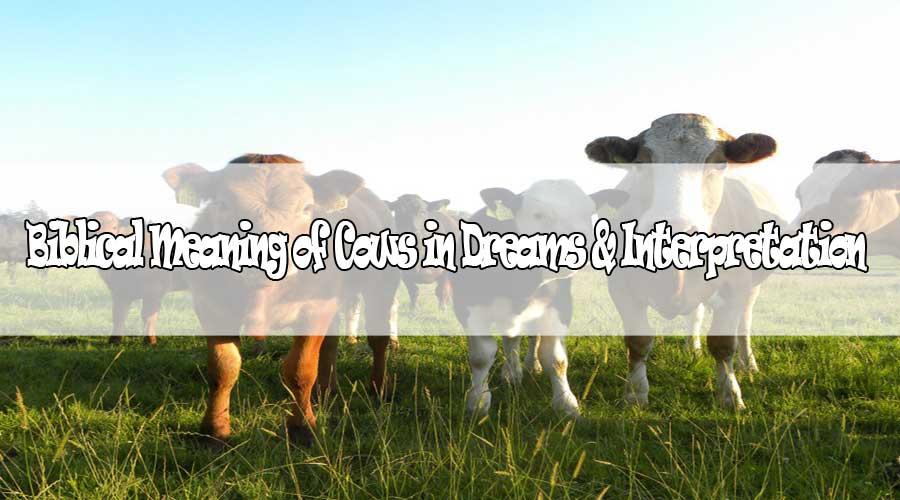 10 Biblical Meaning of Cows in Dreams & Interpretation