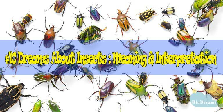 10 Dreams About Insects : Meaning & Interpretation