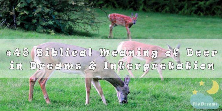 #48 Biblical Meaning of Deer in Dreams & Interpretation