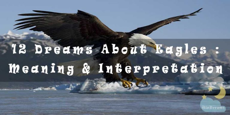 12 Dreams About Eagles : Meaning & Interpretation