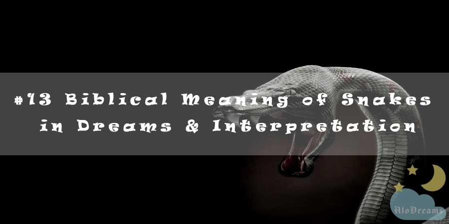 13 Biblical Meaning of Snakes in Dreams & Interpretation