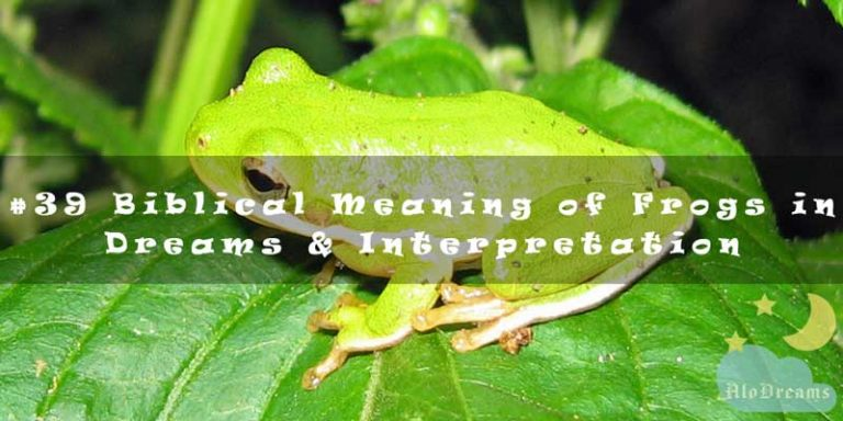 #39 Biblical Meaning of Frogs in Dreams & Interpretation