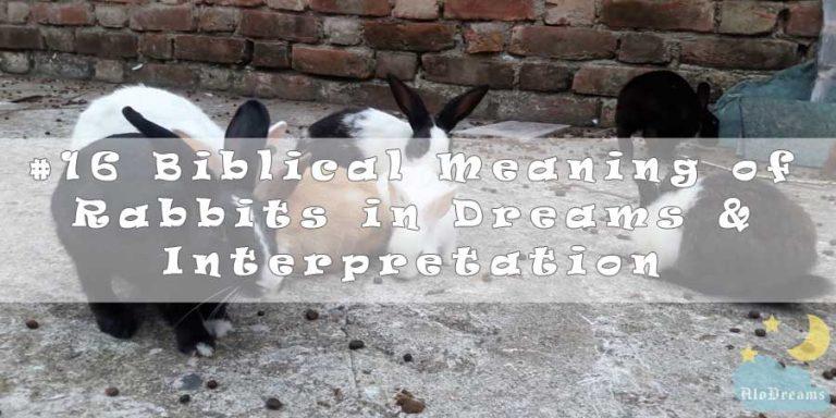 #16 Biblical Meaning of Rabbits in Dreams & Interpretation