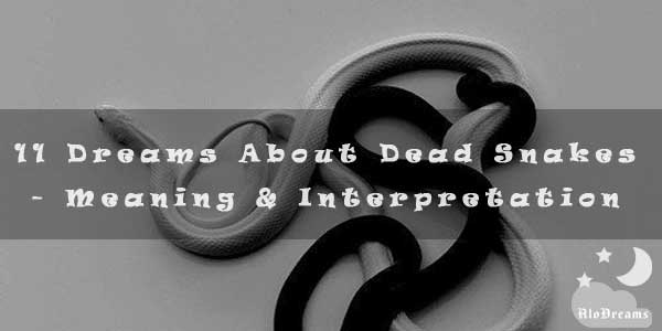 11 Dreams About Dead Snakes - Meaning & Interpretation