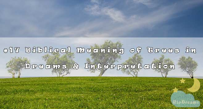 #17 Biblical Meaning of Trees in Dreams & Interpretation