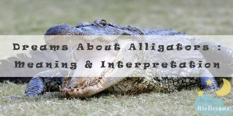 16 Dreams About Alligators : Meaning & Interpretation