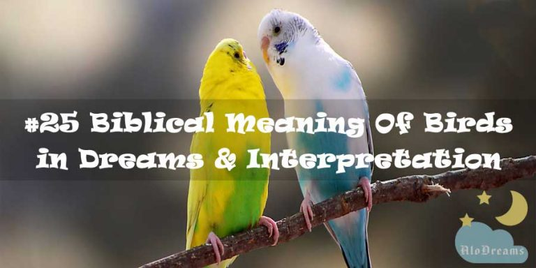 #25 Biblical Meaning Of Birds in Dreams & Interpretation