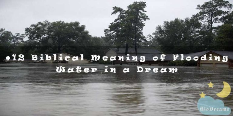 #12 Biblical Meaning of Flooding Water in a Dream & Interpretation