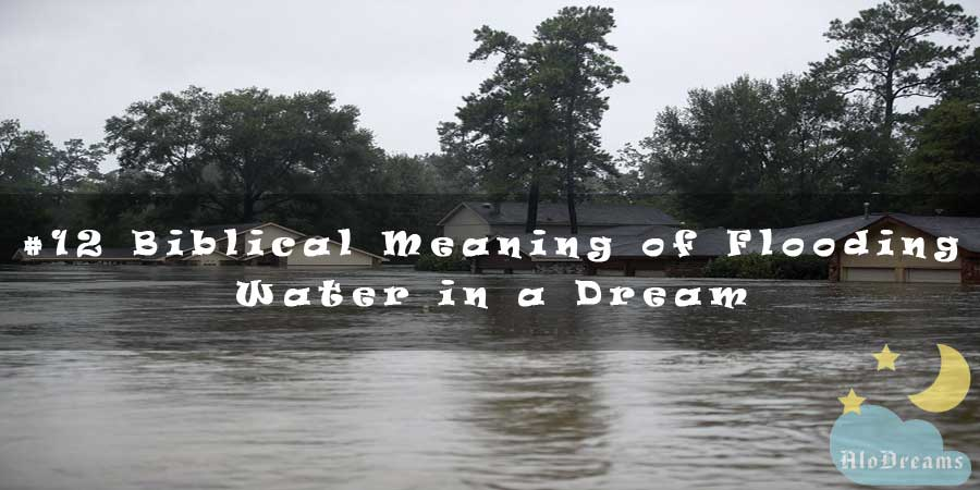 12 Biblical Meaning of Flooding Water in a Dream & Interpretation