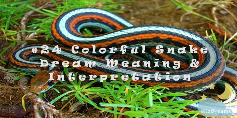 #24 Colorful Snake Dream Meaning & Interpretation