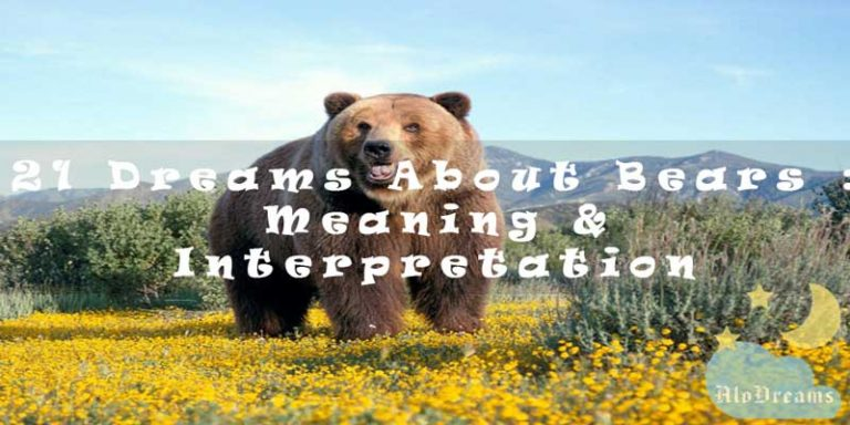 21 Dreams About Bears : Meaning & Interpretation