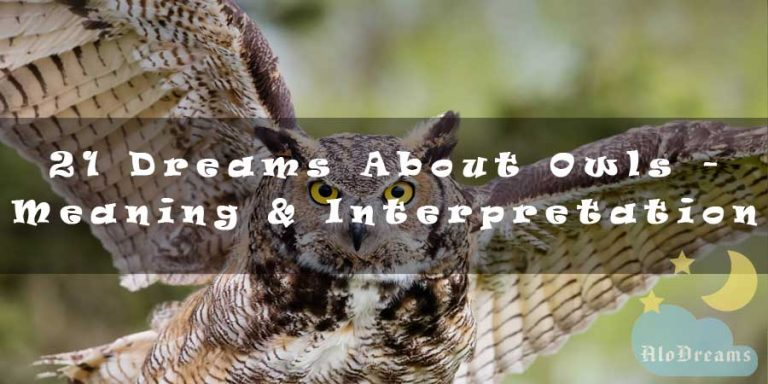21 Dreams About Owls - Meaning & Interpretation