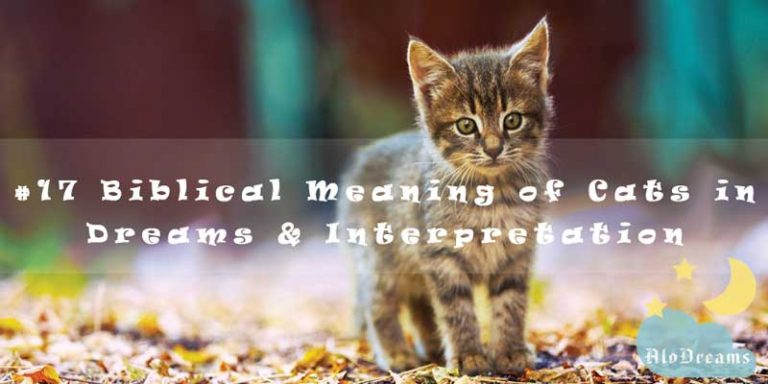 #17 Biblical Meaning of Cats in Dreams & Interpretation