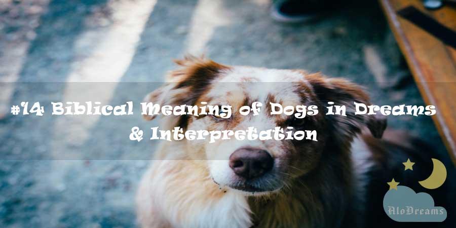 14 Biblical Meaning of Dogs in Dreams & Interpretation