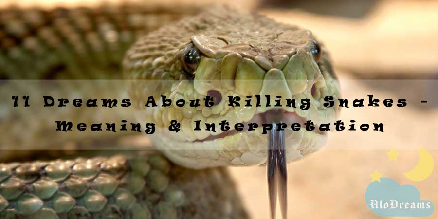 11 Dreams About Killing Snakes Meaning Interpretation