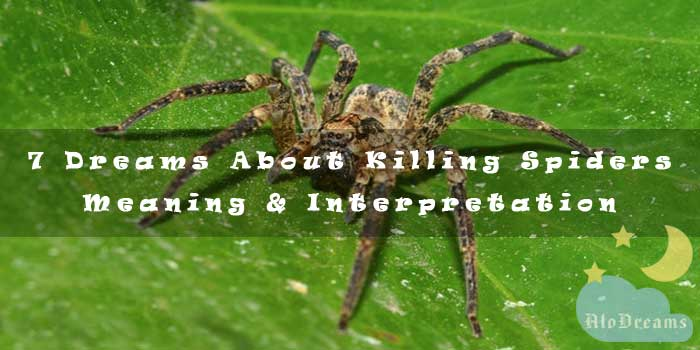 7 Dreams About Killing Spiders - Meaning & Interpretation