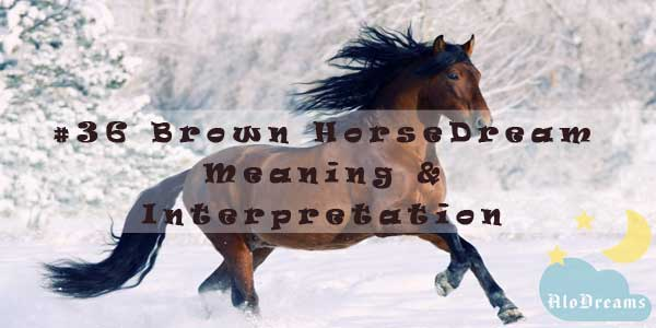 #36 Brown Horse - Dream Meaning & Interpretation
