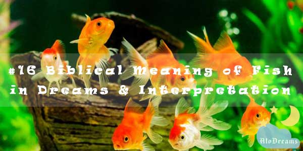 #16 Biblical Meaning of Fish in Dreams & Interpretation