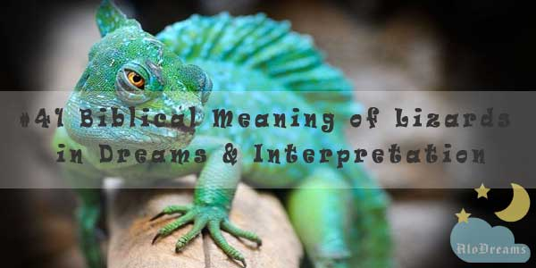#41 Biblical Meaning of Lizards in Dreams & Interpretation