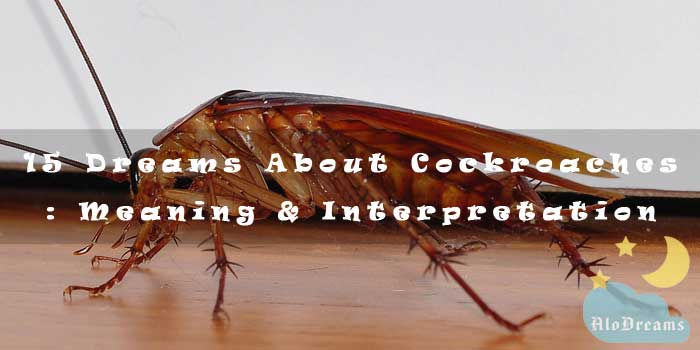 15 Dreams About Cockroaches : Meaning & Interpretation