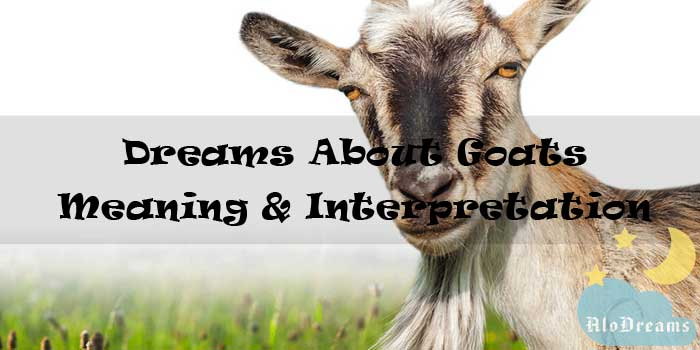 9 Dreams About Goats : Meaning & Interpretation