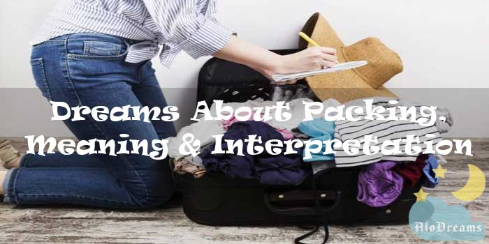 13 Dreams About Packing, Meaning & Interpretation