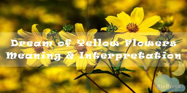 #81 Dream of Yellow Flowers - Meaning & Interpretation