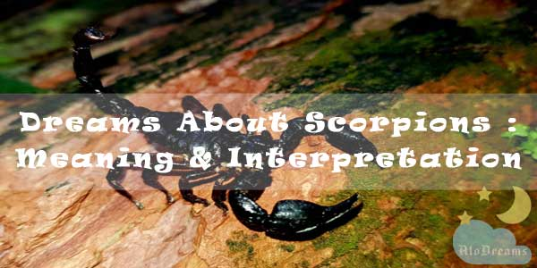 Dreams About Scorpions : Meaning & Interpretation