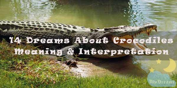 14 Dreams About Crocodiles - Meaning & Interpretation