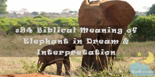 #94 Biblical Meaning of Elephant in Dream & Interpretation