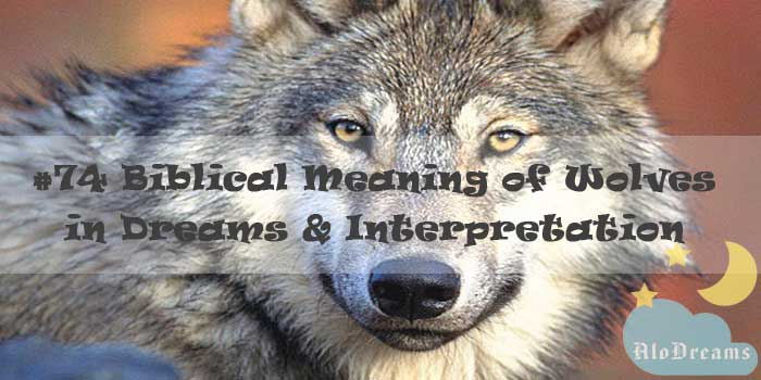 #74 Biblical Meaning of Wolves in Dreams & Interpretation