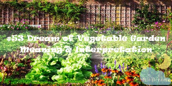 #53 Dream of Vegetable Garden - Meaning & Interpretation