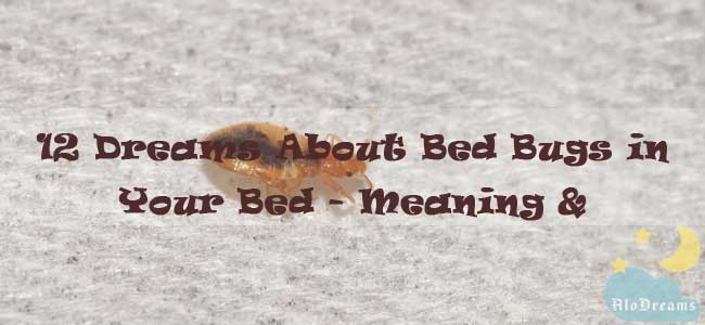 12 Dreams About Bed Bugs in Your Bed - Meaning & Interpretation