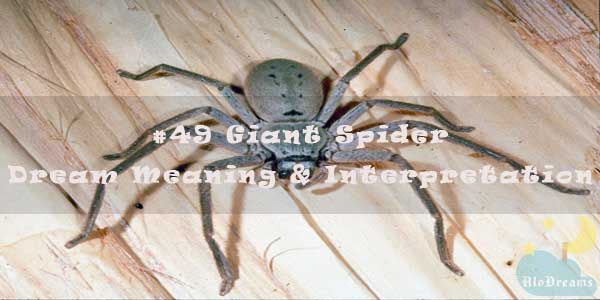 #49 Giant Spider - Dream Meaning & Interpretation