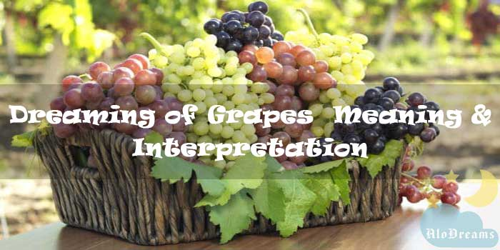 #15 Dreaming about Grapes : Meaning & Interpretation