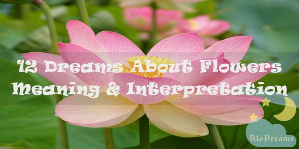 12 Dreams About Flowers : Meaning & Interpretation