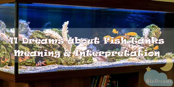 11 Dreams about Fish Tanks - Meaning & Interpretation