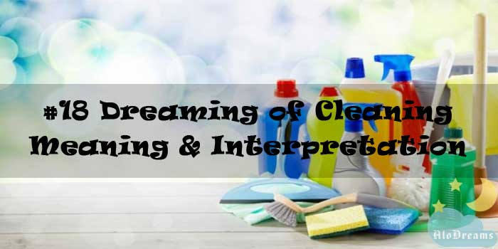 #18 Dreaming of Cleaning - Meaning & Interpretation